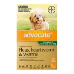 ADVOCATE GREEN SMALL DOG <4KG 3PK